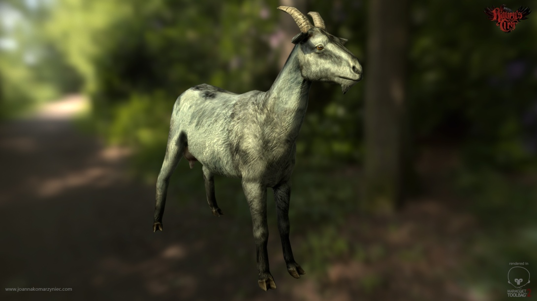 Goat_front